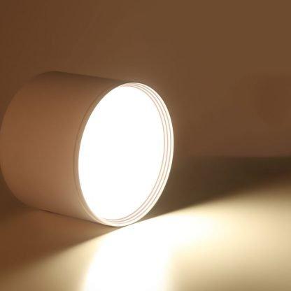 Surface Mounted LED Downlight Roundlit